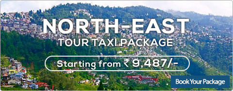 North India packages